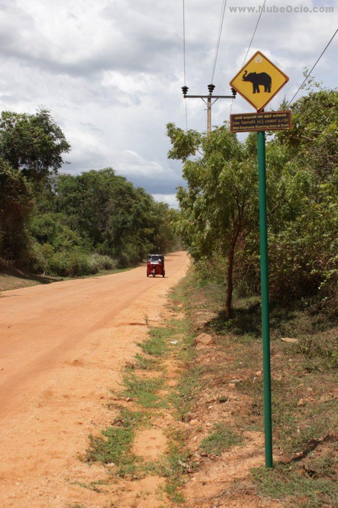 Camino Sigiriya Sri Lanka