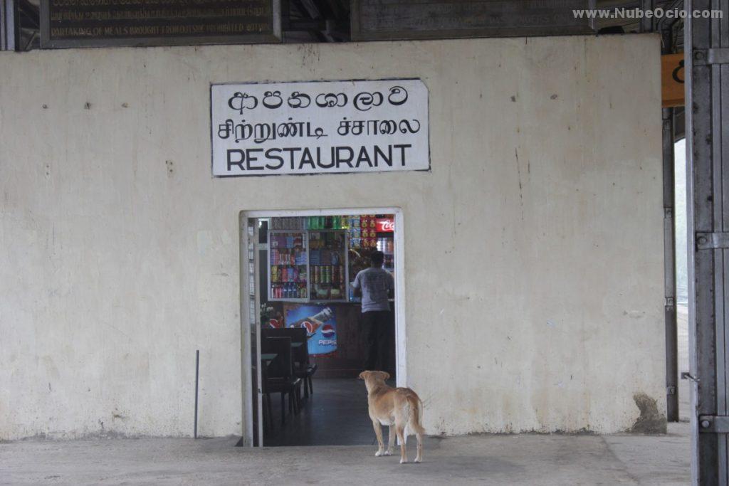 Estación de Nanu Oya Sri Lanka