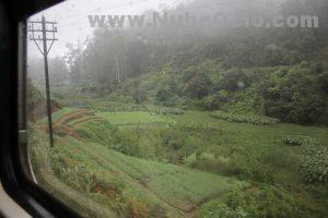 Tren hacia Ella Sri Lanka