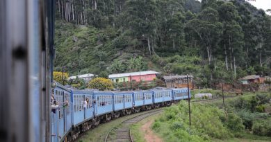 Tren de Nuwara Eliya a Ella en Sri Lanka
