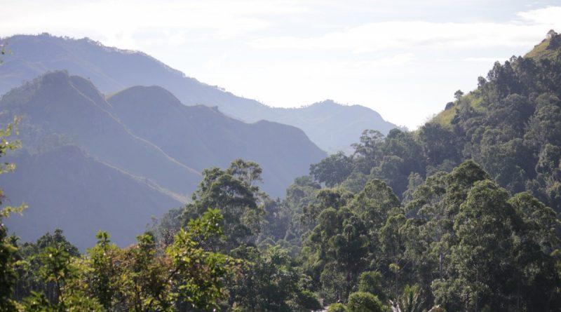 Montañas Ella Sri Lanka